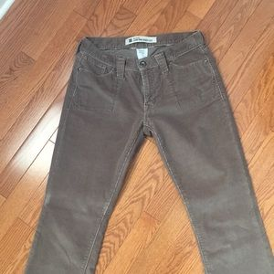 Gap low rose boot cut cords